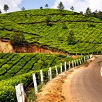 Vote for Coorg-Munnar as the Riding Wonder of the World