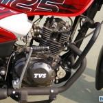 TVS Phoenix 125 (35)