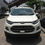 Ford India dealerships start getting EcoSport demo cars