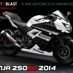 Kawasaki Ninja 250SL 2014 could be the upcoming single pot Kwacker!