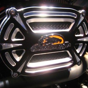 Harley davidson India Street 750 Auto Expo 2014 (7)