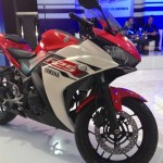 Yamaha R25 Unveiled: Images, Specs, Details and Price